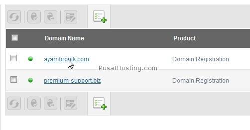 pilih domain di domain panel