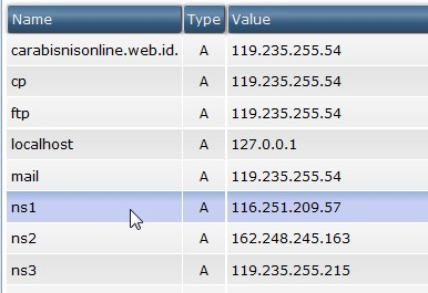 penambahan ns record di dns management directadmin pusathosting